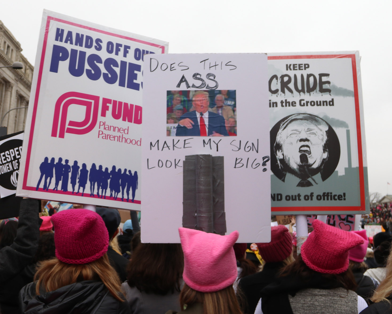 Woman's March 2017. Washington D.C.